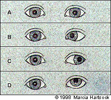Cilindrica longitudinal study